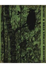 Erdei vadak és madarak biológiája - Régikönyvek