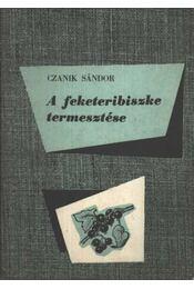 A feketeribiszke termesztése - Régikönyvek