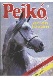 Pejkó, az én lovam 7. - Régikönyvek