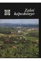 Zalai képeskönyv - Régikönyvek