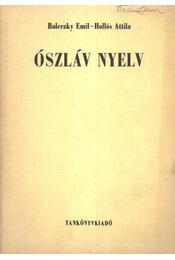 Ószláv nyelv - Régikönyvek
