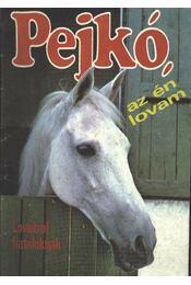 Pejkó, az én lovam - Lovakról fiataloknak - Régikönyvek