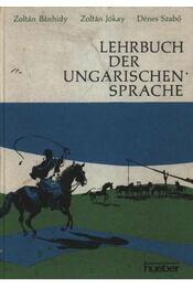 Lehrbuch der Ungarischen Sprache - Régikönyvek