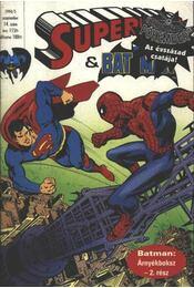 Superman és Batman 1994/5. szeptember 14. szám - Régikönyvek
