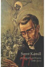 Szent Kamill - Régikönyvek