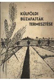 Külföldi búzafajták termesztése - Régikönyvek
