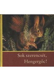 Sok szerencsét, Hengergőc! - Régikönyvek