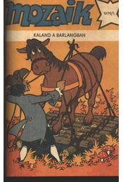Kaland a barlangban (Mozaik 1979/1.) - Régikönyvek