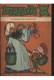 A csodálatos gyógyulás (Mozaik 1982/2.) - Régikönyvek