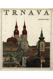 Trnava - Régikönyvek