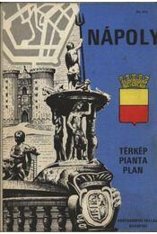Nápoly térkép - Régikönyvek