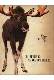 Az állatok világában (В мире животных) - Régikönyvek