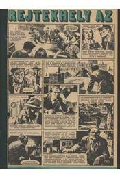 Rejtekhely az Elbán ( Füles1979. 24-38 szám.1-8 rész ) - Régikönyvek