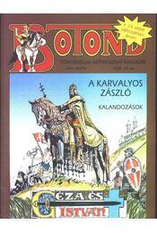 Botond 2006/13. - Régikönyvek