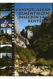 Erdélyi utazások - Régikönyvek
