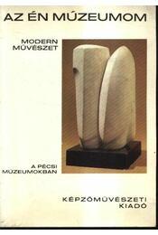 Modern művészet a pécsi múzeumokban - Régikönyvek