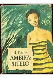 Ambinanitelo - Régikönyvek