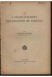A szarvasmarha tenyésztése és tartása - Régikönyvek