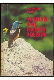 Madárdal erdőn-mezőn - Régikönyvek