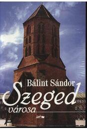 Szeged városa - Régikönyvek