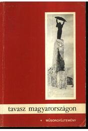 Tavasz Magyarországon - Régikönyvek