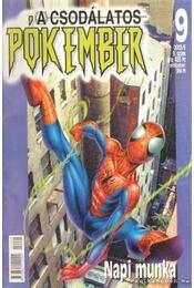 A csodálatos Pókember 2002/5. 9. szám - Régikönyvek