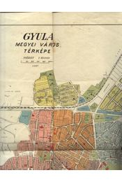 Gyula megyei város térképe - Régikönyvek