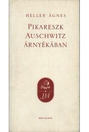 Pikareszk Auschwitz árnyékában - Régikönyvek