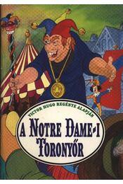 A Notre Dame-i toronyőr - Régikönyvek