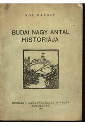 Budai Nagy Antal históriája - Régikönyvek