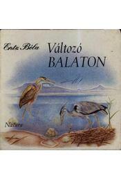 Változó Balaton - Régikönyvek