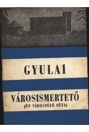 Gyulai városismertető - Régikönyvek