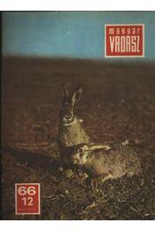Magyar Vadász 1966/12. - Régikönyvek