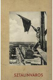 Sztálinváros - Régikönyvek