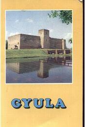 Gyula - Régikönyvek