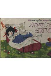 Zsémbes Zsófi ébredése - Régikönyvek