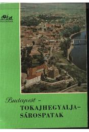 Budapest-Tokajhegyalja-Sárospatak - Régikönyvek
