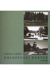 atirni - Kolozsvári kertek - Régikönyvek