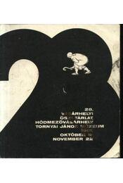 28. Vásárhelyi Őszi Tárlat. Hódmezővásárhely. Tornyai János múzeum 1981. október 11- november 22 - Régikönyvek