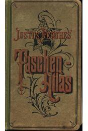 Taschen-Atlas - Régikönyvek