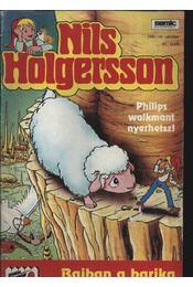 Nils Holgersson 1991/10. október 41. szám - Régikönyvek