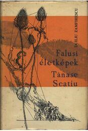 Falusi életképek, Tanase scatiu - Régikönyvek