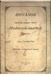Rovások a legősibb magyar város: Hódmezővásárhely multjáról - Régikönyvek