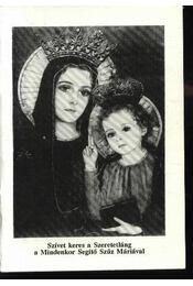 Szivet keres a Szeretetláng a Mindenkor Segítő Szűz Máriával - Régikönyvek