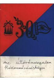 Az úttörőmozgalom Hódmezővásárhelyen - Régikönyvek