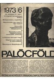 Palócföld 1973/6. - Régikönyvek