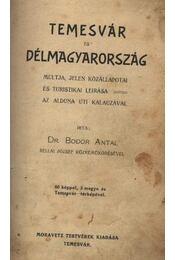 Temesvár és Délmagyarország multja, jelen közállapotai és turistikai leirása - az Alduna uti kalauzával - Régikönyvek