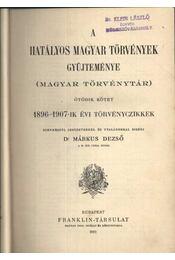 A hatályos magyar törvények gyűjteménye V. - Régikönyvek