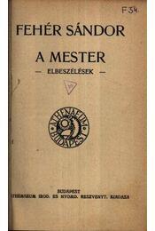 A mester - Simorka Ulrik orgonista tragikus históriája - A vér - Az ige terjedése - Régikönyvek