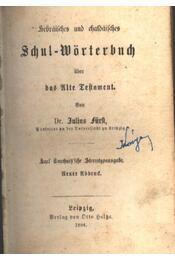Schul Wörterbuch - Régikönyvek